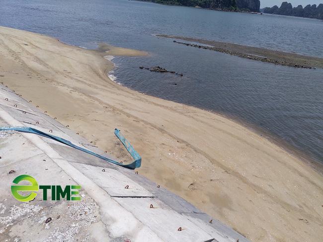 Luật sư vạch trần sai phạm tại dự án khu đô thị TTP ven biển Quảng Ninh