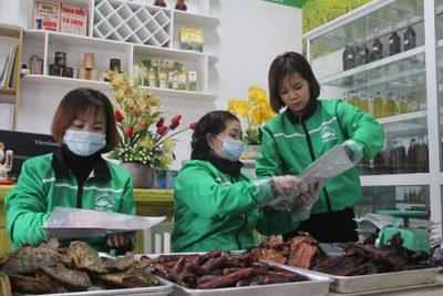 Yên Bái: Đồng Thị Hiền – nữ Giám đốc 9X làm kinh tế giỏi