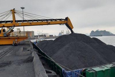 Công ty Kho vận & cảng Cẩm Phả – TKV vào Xuân